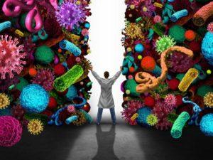 Микробиота